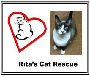 Rita's Cat Rescue Card Image